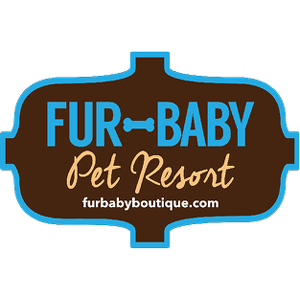 Team Page: Fur Baby Pet Resort